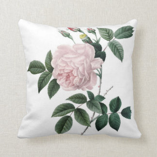 Pink Rose from Les Roses of Redoute Rosa Indica Throw Pillow