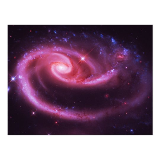 Pink Rose Galaxies Postcard