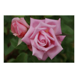 Pink Rose Garden Acrylic Oil Painting on Canvas Poster