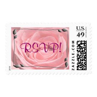 Pink Rose Gray Bud, RSVP! Postage Stamp