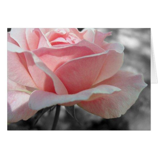 Pink Rose Gray Card