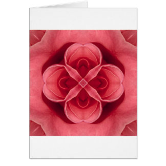 Pink Rose Greeting Cards