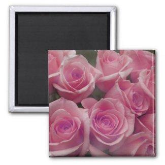 Pink rose group bunch photograph design magnet