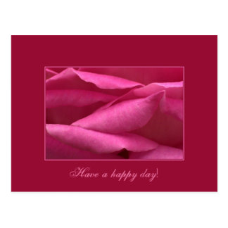 Pink rose - Have a happy day! Postcard