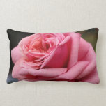 Pink Rose I Pretty Floral Photography Lumbar Pillow
