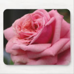 Pink Rose I Pretty Floral Photography Mouse Pad