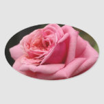 Pink Rose I Pretty Floral Photography Oval Sticker