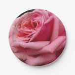Pink Rose I Pretty Floral Photography Paper Plate