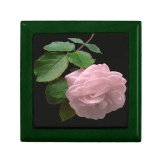 Pink Rose in Full Bloom Jewelry Box