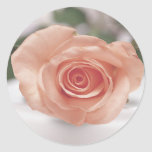 Pink Rose invitation stickers