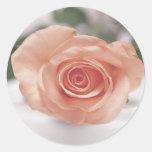 Pink Rose invitation stickers