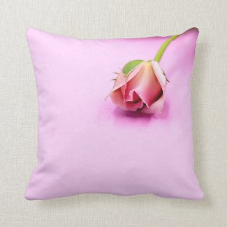 Pink rose is on pink background throw pillow