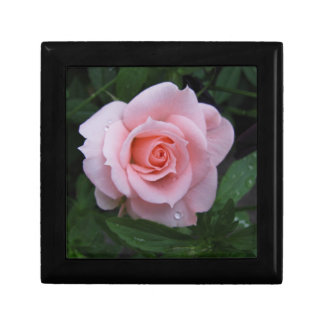 Pink Rose Keepsake Box