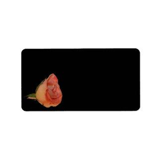 Pink rose left corner black background design address label