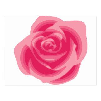 Pink Rose Light Pastelle Pink Delicate Flower Postcard