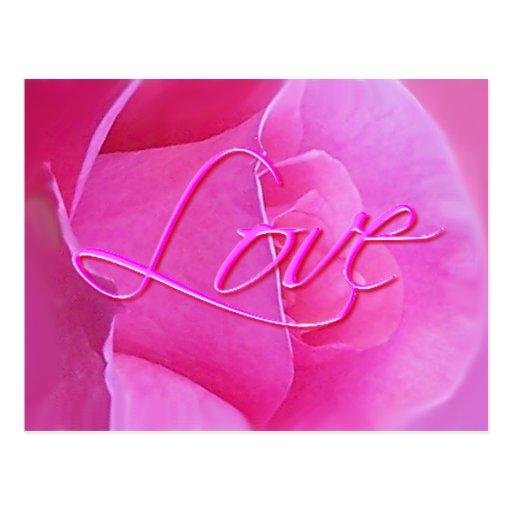 PINK ROSE & LOVE by SHARON SHARPE Postcard