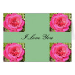 pink rose love cards