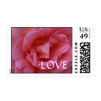 Pink Rose Love Postage