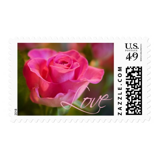 Pink Rose • Love Stamp