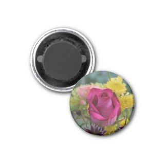Pink Rose Magnet magnet