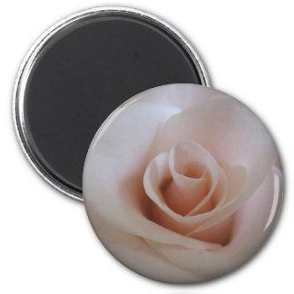 Pink rose refrigerator magnet