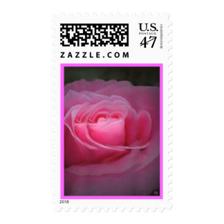 Pink Rose Mirrored Postage