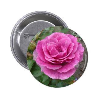 Pink Rose of Love Pin
