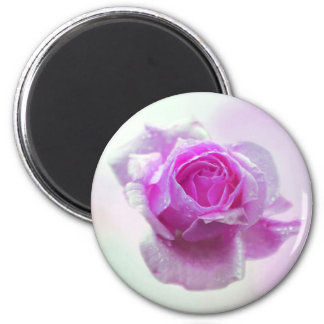 Pink Rose of love Magnet
