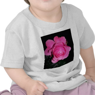 Pink Rose of Love Tshirt