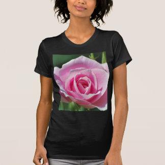 Pink Rose of Love Tees