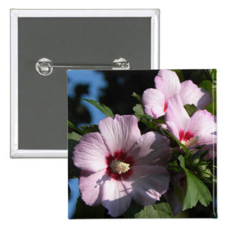 Pink Rose of Sharon blooms 2 Inch Square Button