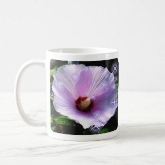 Pink Rose of Sharon  Mug