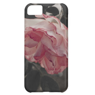 Pink Rose on Black and White Background Photo iPhone 5C Cover