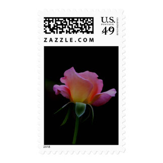 """Pink Rose Open Arms II """"New Beginning"""" Stamps"""