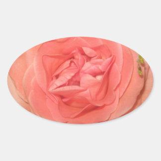 Pink Rose Oval Sticker
