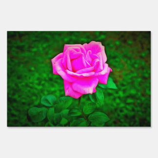 Pink rose painting signs