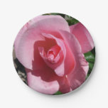 Pink Rose Paper Plate