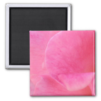 Pink Rose Petal Art  -  Theme Decorations Magnets
