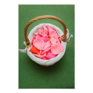 Pink rose petals basket photographic print
