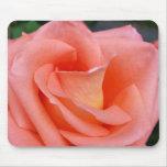 pink rose petals mouse pad