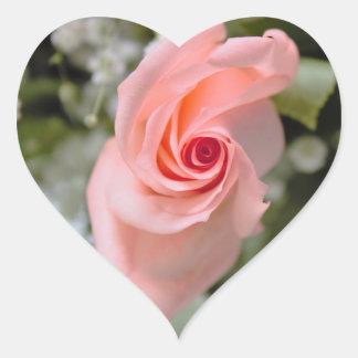Pink Rose Photo Heart Sticker