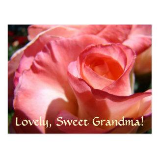 PINK ROSE POST CARD Lovely Sweet Grandma!