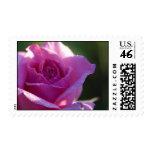 Pink Rose Postage