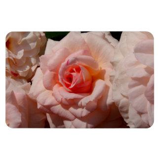 pink rose vinyl magnets