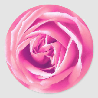Pink rose print classic round sticker
