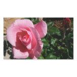 Pink Rose Rectangular Sticker