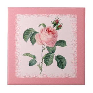 Pink Rose Redoute Ceramic Tile