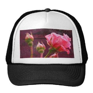 Pink Rose & Rosebud on a Grunge Background Trucker Hat