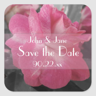 "Pink Rose ""Save the Date"" Square Sticker"