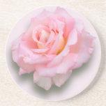 Pink Rose 'Scentsation' Drink Coaster